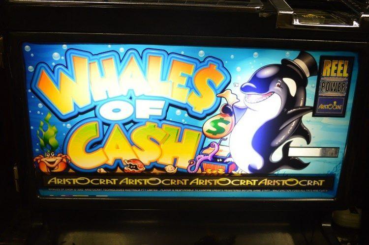 online casino cash orca auge